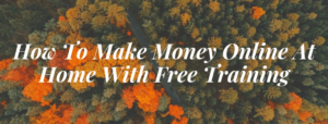 How to make money online free training
